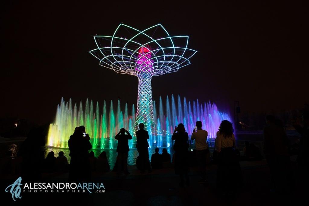 Spettacolo albero della vita expo Milano